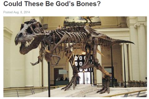 God's bones
